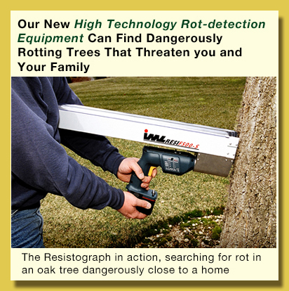 resistograph